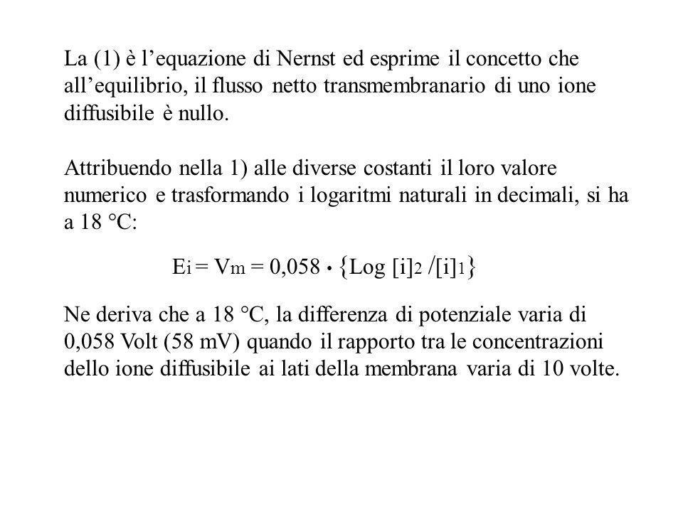 La (1) è l'equazione di Nernst ed esprime il concetto che all'equilibrio, il flusso netto transmembranario di uno ione diffusibile è nullo.