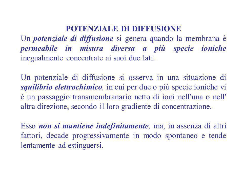 POTENZIALE DI DIFFUSIONE