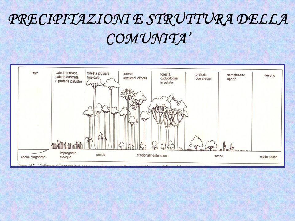 PRECIPITAZIONI E STRUTTURA DELLA COMUNITA'