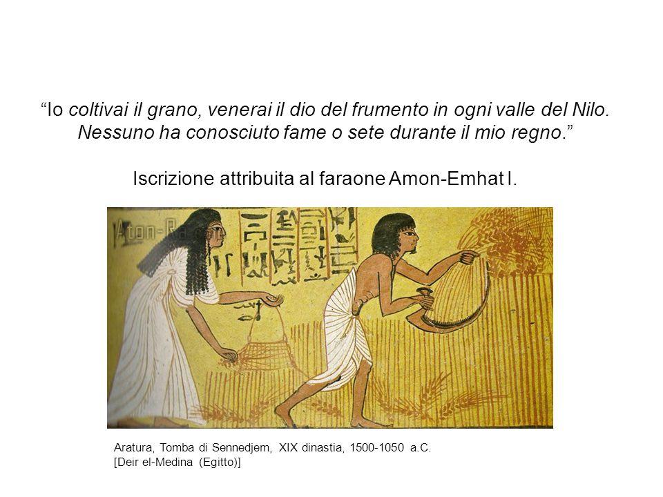 Io coltivai il grano, venerai il dio del frumento in ogni valle del Nilo. Nessuno ha conosciuto fame o sete durante il mio regno. Iscrizione attribuita al faraone Amon-Emhat I.