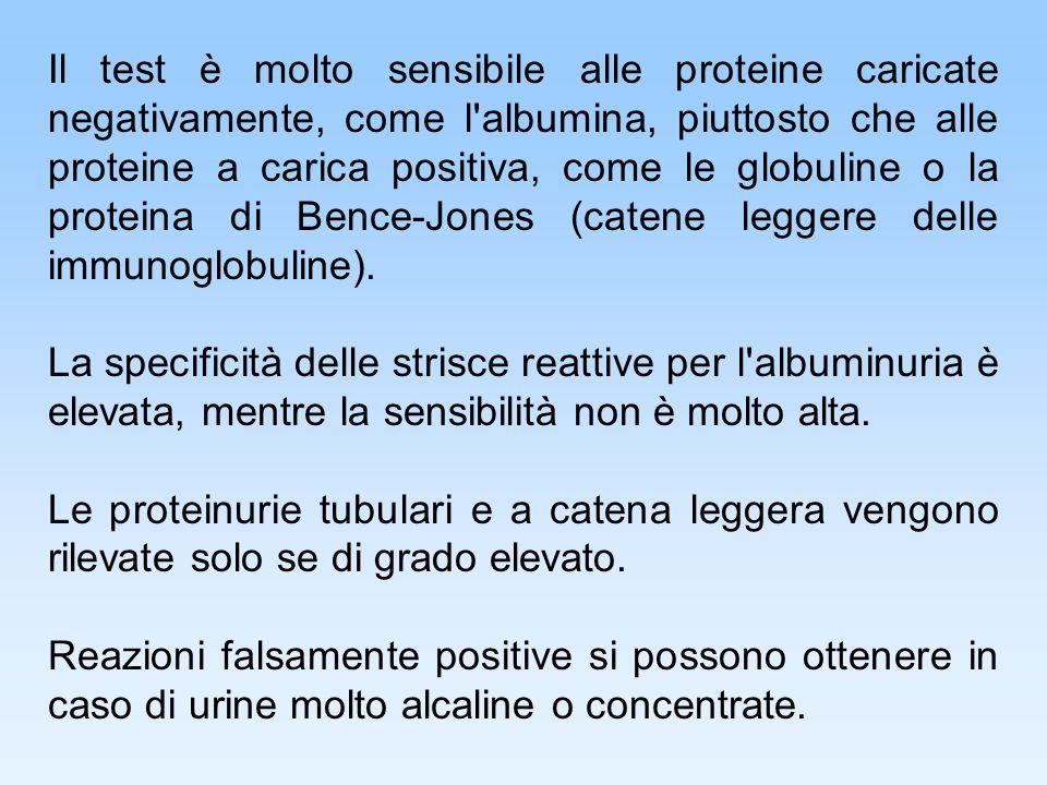 Il test è molto sensibile alle proteine caricate negativamente, come l albumina, piuttosto che alle proteine a carica positiva, come le globuline o la proteina di Bence-Jones (catene leggere delle immunoglobuline).