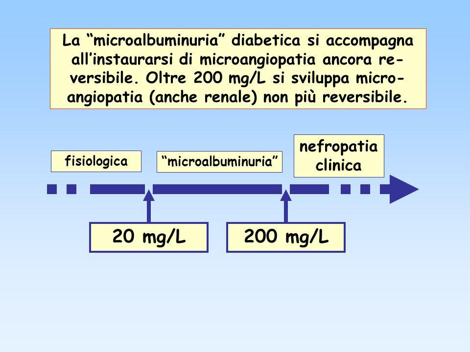 La microalbuminuria diabetica si accompagna all'instaurarsi di microangiopatia ancora re-versibile. Oltre 200 mg/L si sviluppa micro- angiopatia (anche renale) non più reversibile.