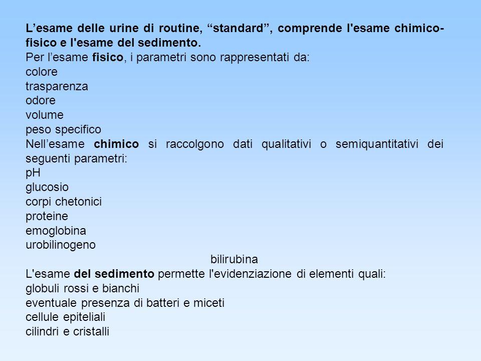 L'esame delle urine di routine, standard , comprende l esame chimico-fisico e l esame del sedimento.