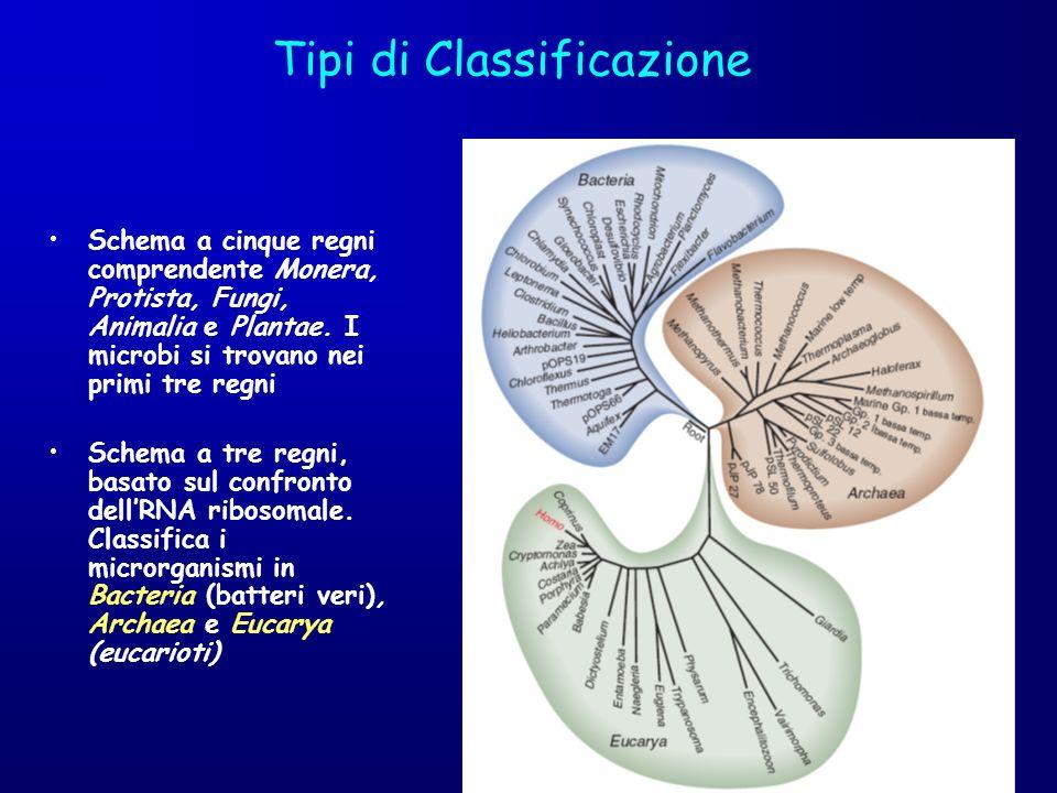 Tipi di Classificazione