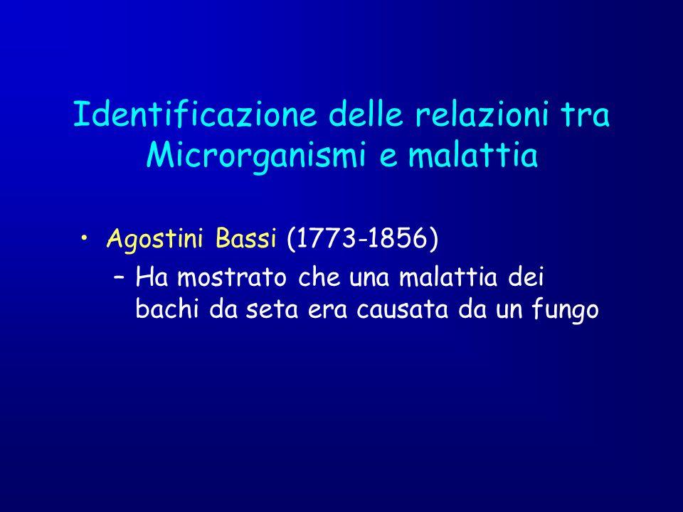 Identificazione delle relazioni tra Microrganismi e malattia