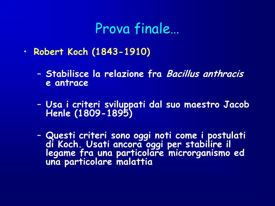 Prova finale… Robert Koch (1843-1910)