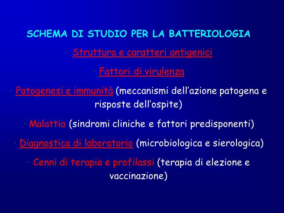 SCHEMA DI STUDIO PER LA BATTERIOLOGIA