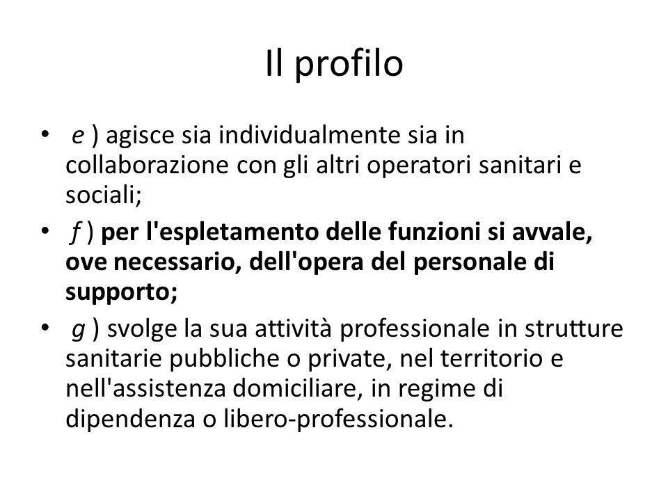Il profilo e ) agisce sia individualmente sia in collaborazione con gli altri operatori sanitari e sociali;