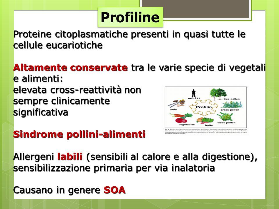 Profiline Proteine citoplasmatiche presenti in quasi tutte le