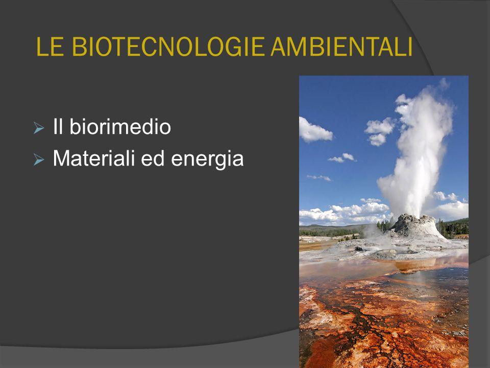 LE BIOTECNOLOGIE AMBIENTALI