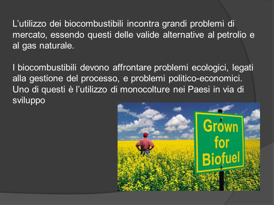 L'utilizzo dei biocombustibili incontra grandi problemi di mercato, essendo questi delle valide alternative al petrolio e al gas naturale.