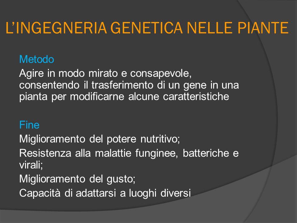 L'INGEGNERIA GENETICA NELLE PIANTE