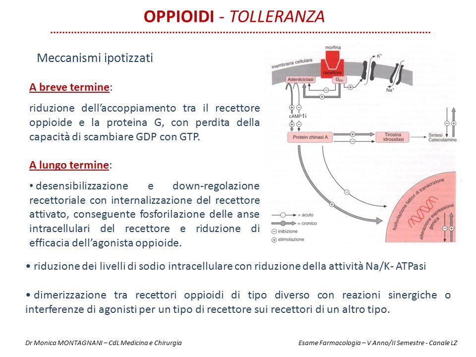 Oppioidi - Tolleranza Meccanismi ipotizzati A breve termine: