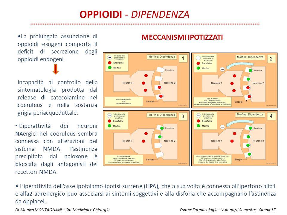 Oppioidi - Dipendenza Meccanismi ipotizzati