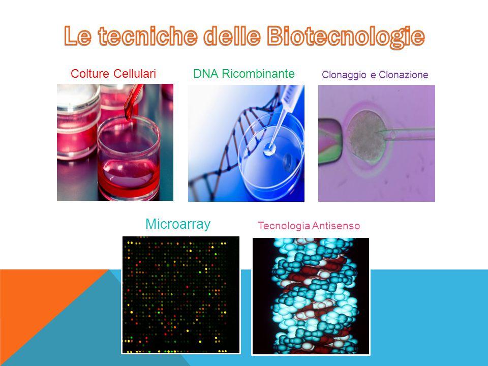 Le tecniche delle Biotecnologie