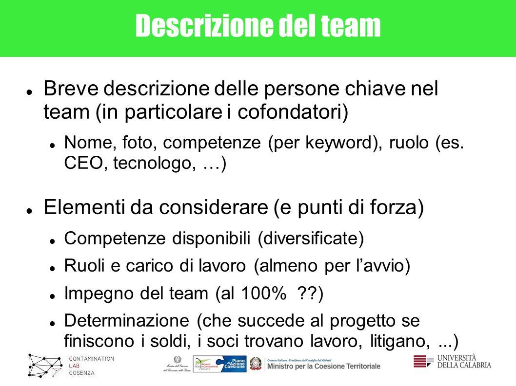 Descrizione del team Breve descrizione delle persone chiave nel team (in particolare i cofondatori)
