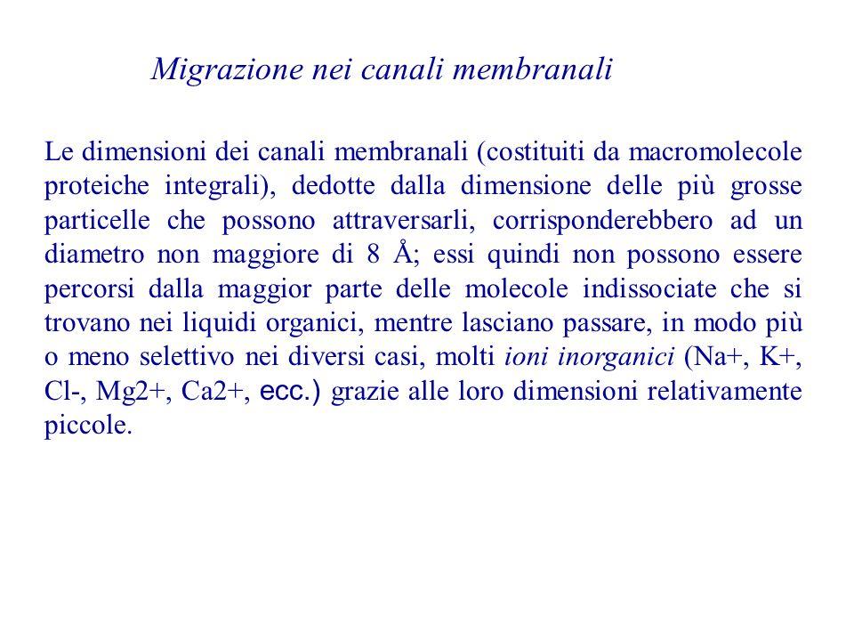 Migrazione nei canali membranali