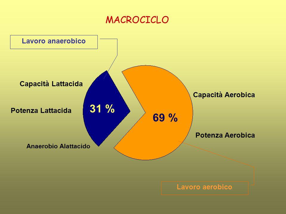 31 % 69 % MACROCICLO Lavoro anaerobico Capacità Lattacida