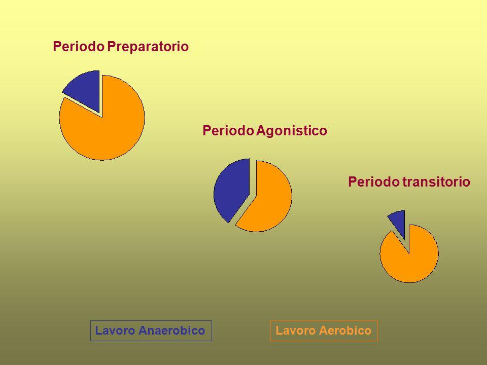 Periodo Preparatorio Periodo Agonistico Periodo transitorio