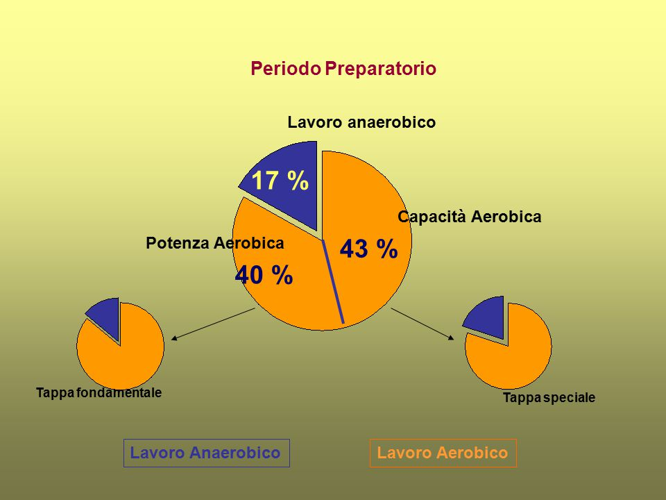 17 % 43 % 40 % Periodo Preparatorio Lavoro anaerobico