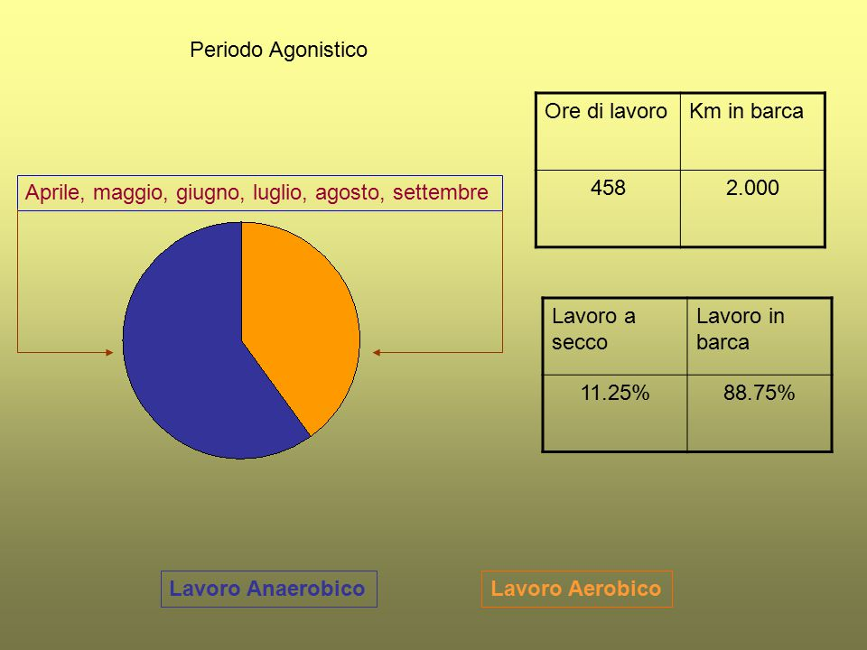Periodo Agonistico Ore di lavoro. Km in barca. 458. 2.000. Aprile, maggio, giugno, luglio, agosto, settembre.
