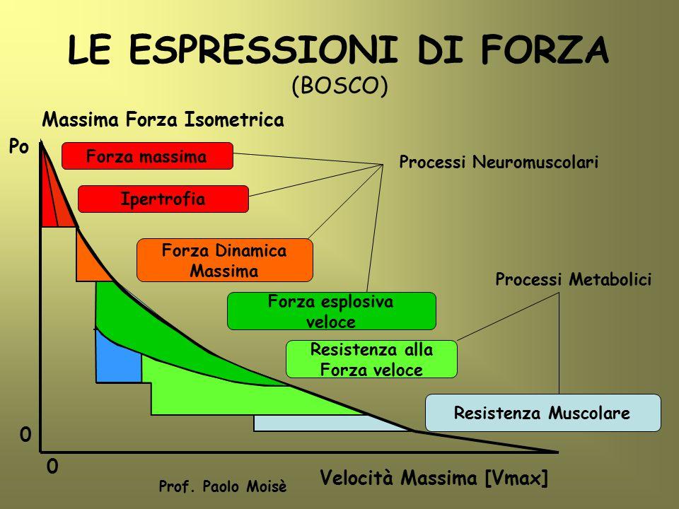 LE ESPRESSIONI DI FORZA (BOSCO)