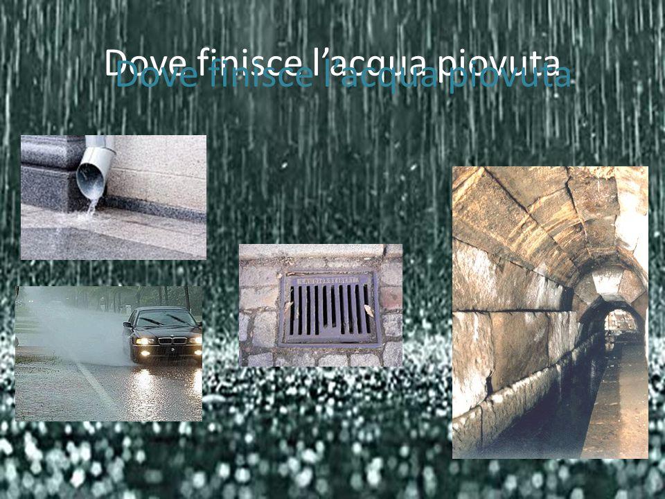 Dove finisce l'acqua piovuta