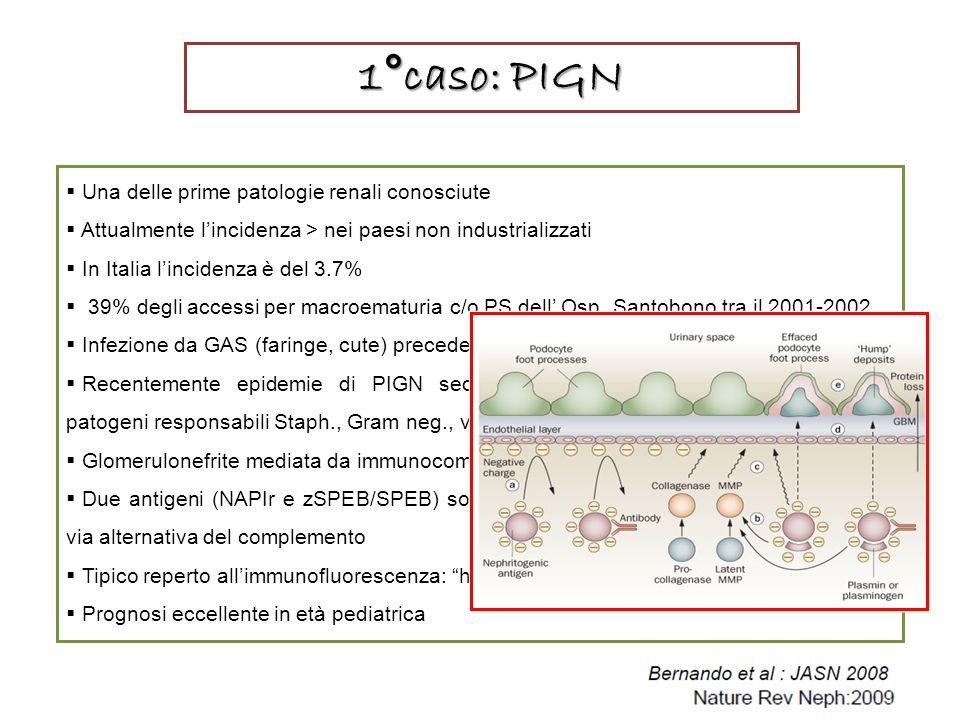 1°caso: PIGN Una delle prime patologie renali conosciute