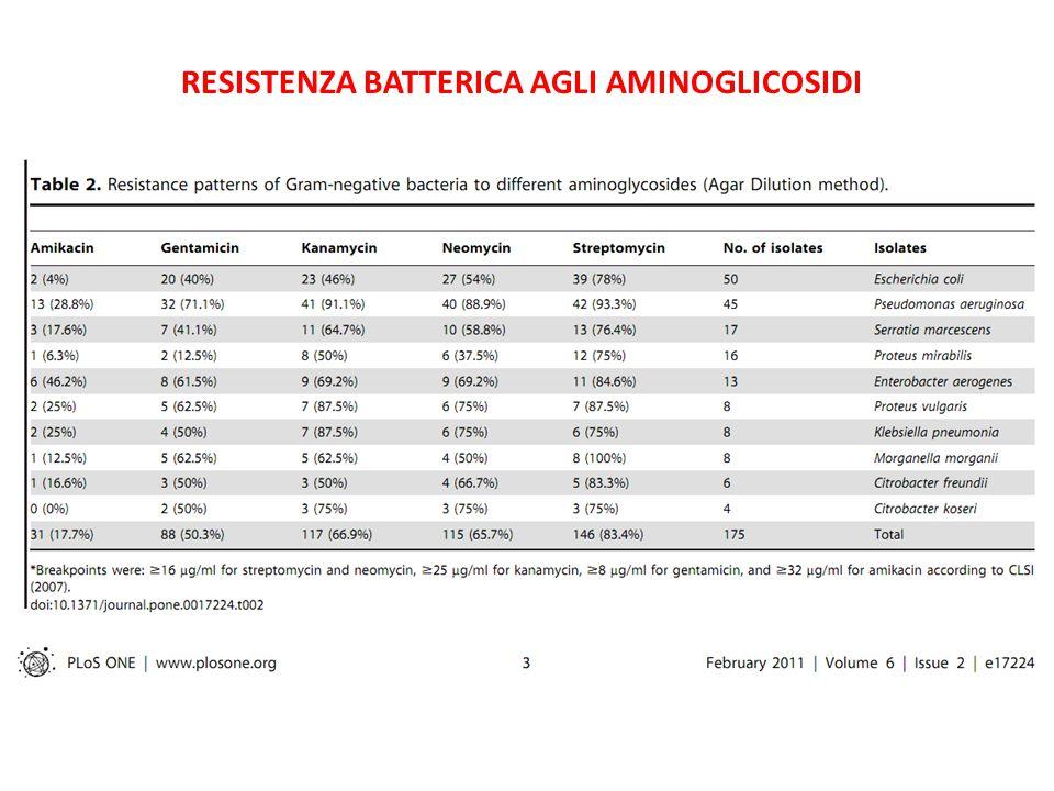 Resistenza batterica agli aminoglicosidi