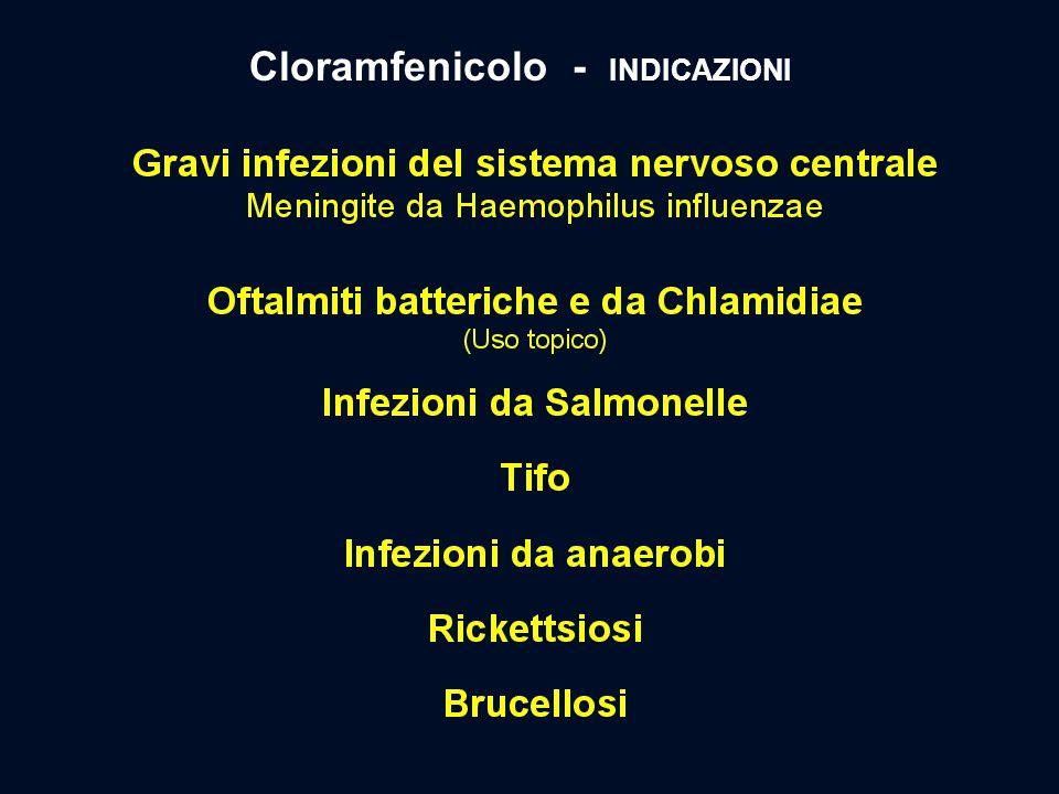 Cloramfenicolo - INDICAZIONI