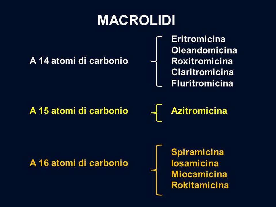 MACROLIDI Eritromicina Oleandomicina Roxitromicina Claritromicina