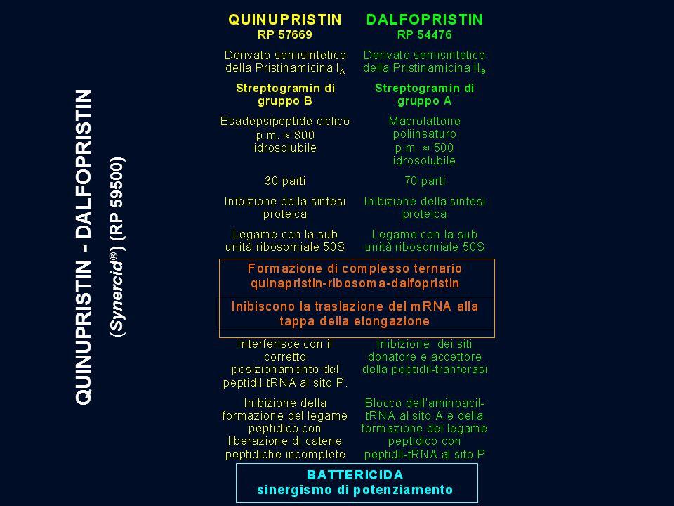 QUINUPRISTIN - DALFOPRISTIN