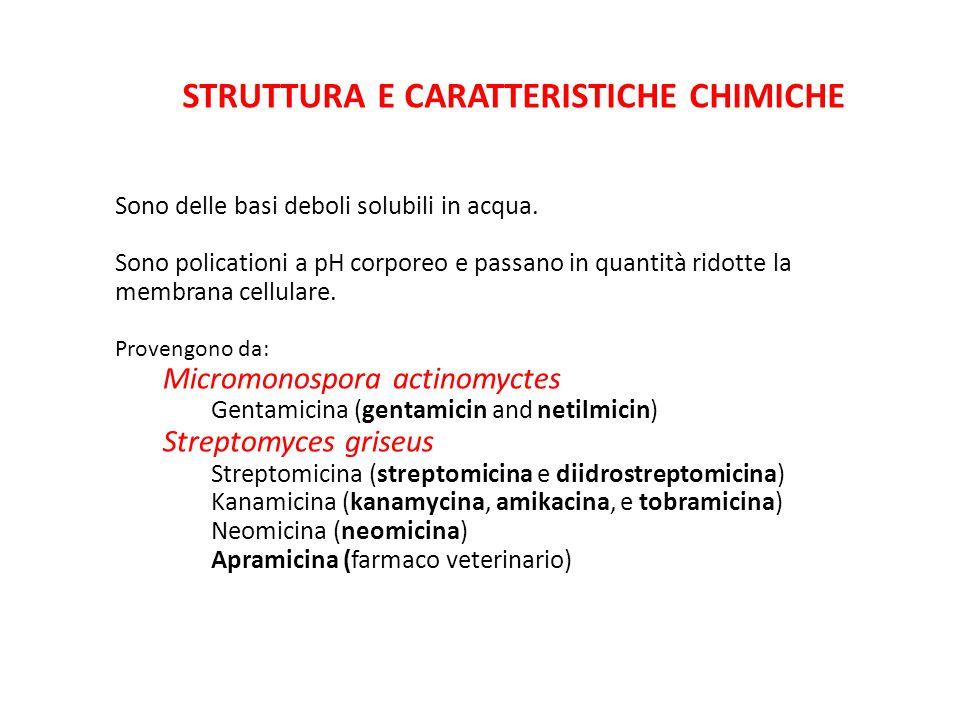 Struttura e caratteristiche chimiche