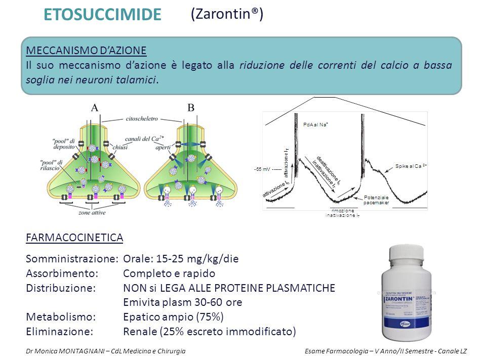 ETOSUCCIMIDE (Zarontin®) MECCANISMO D'AZIONE