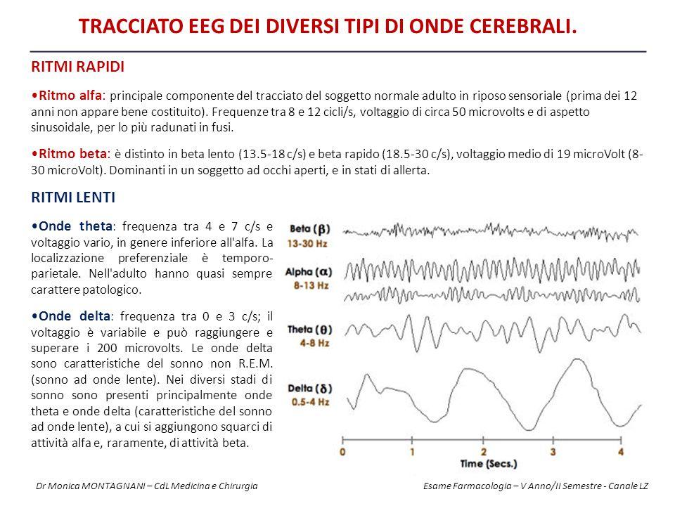 Tracciato EEG dei diversi tipi di onde cerebrali.