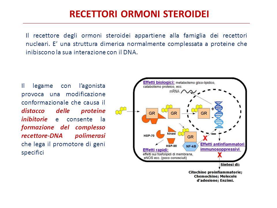rECETTORI ormoni steroidei