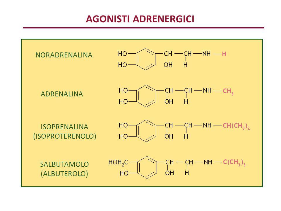 AGONISTI ADRENERGICI NORADRENALINA ADRENALINA