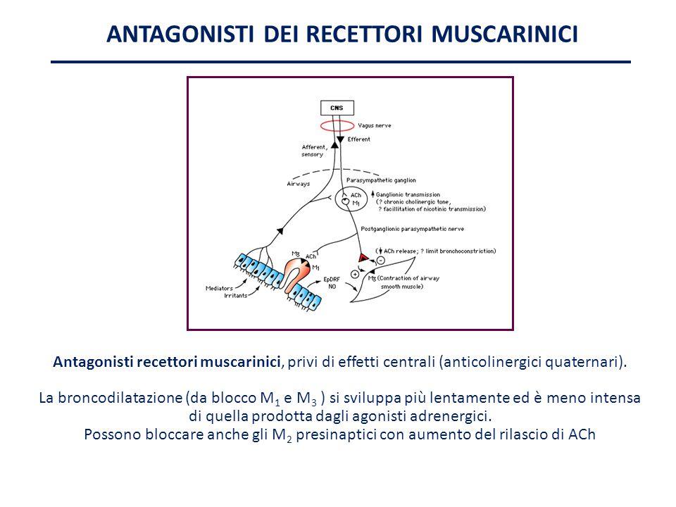 ANTAGONISTI DEI RECETTORI MUSCARINICI