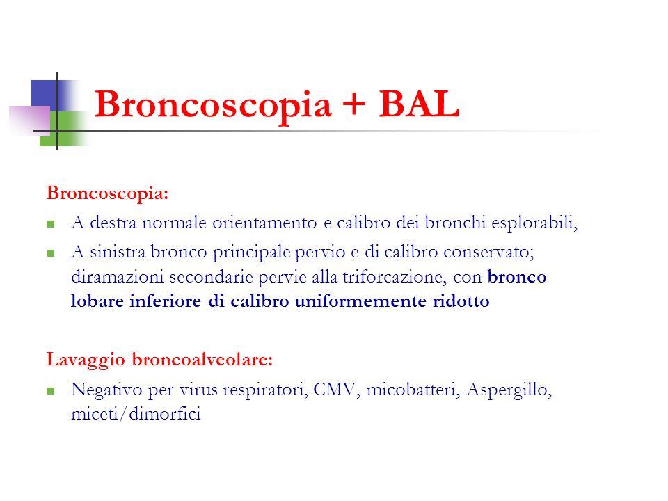 Broncoscopia + BAL Broncoscopia: