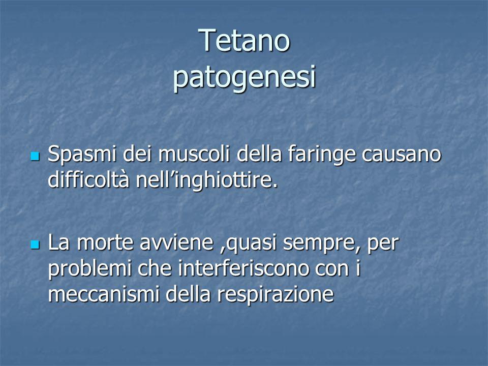 Tetano patogenesi Spasmi dei muscoli della faringe causano difficoltà nell'inghiottire.