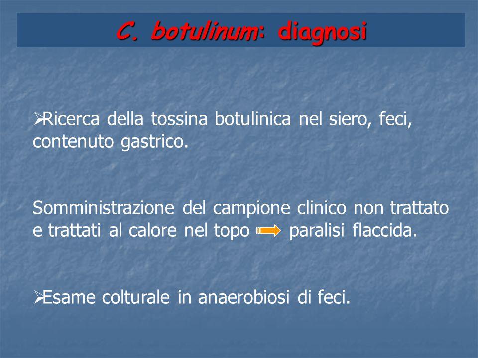 C. botulinum: diagnosi Ricerca della tossina botulinica nel siero, feci, contenuto gastrico.