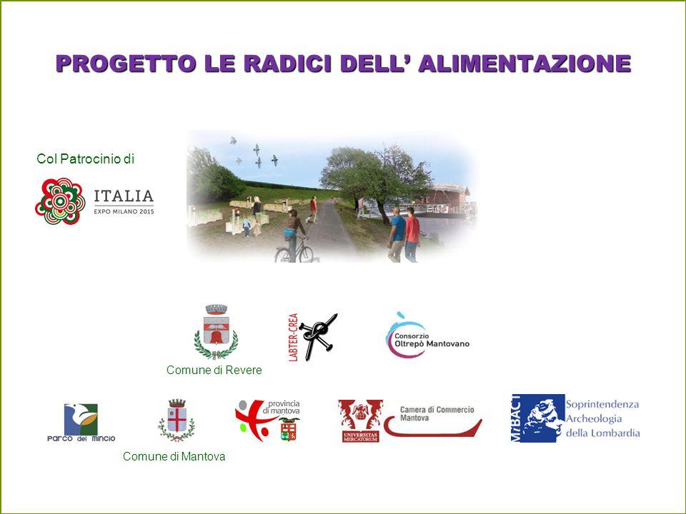PROGETTO LE RADICI DELL' ALIMENTAZIONE