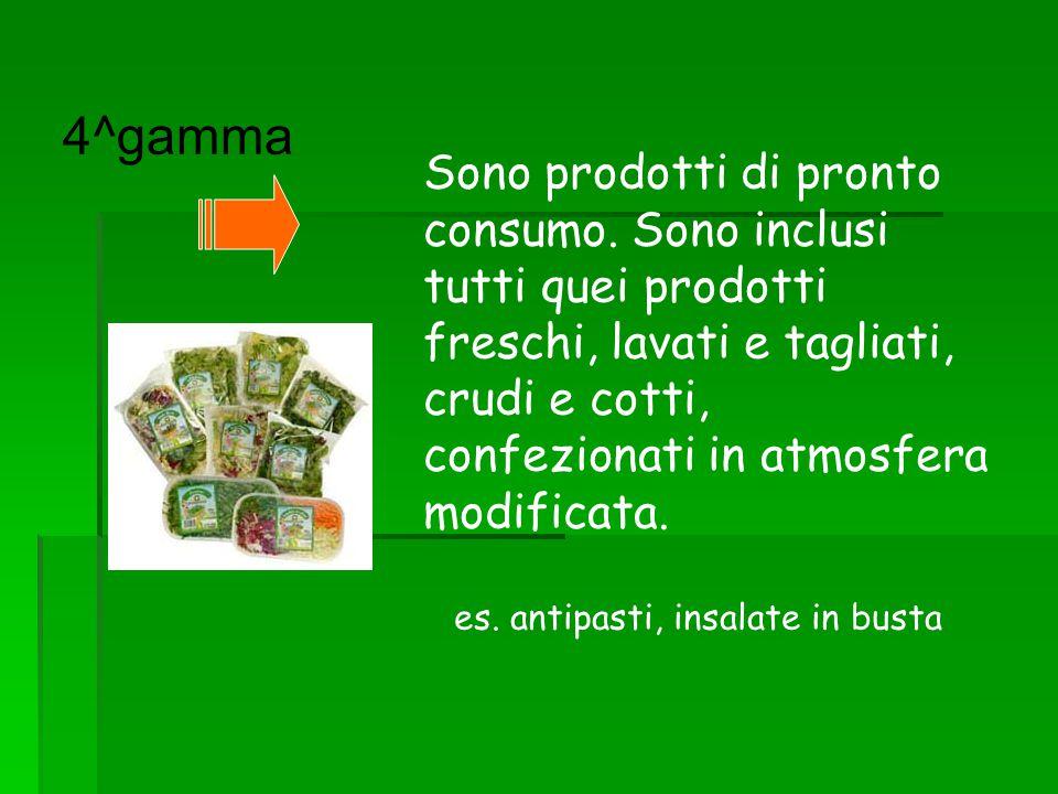 4^gamma