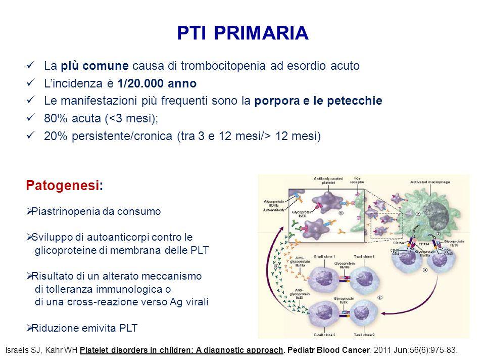 pti primaria Patogenesi: