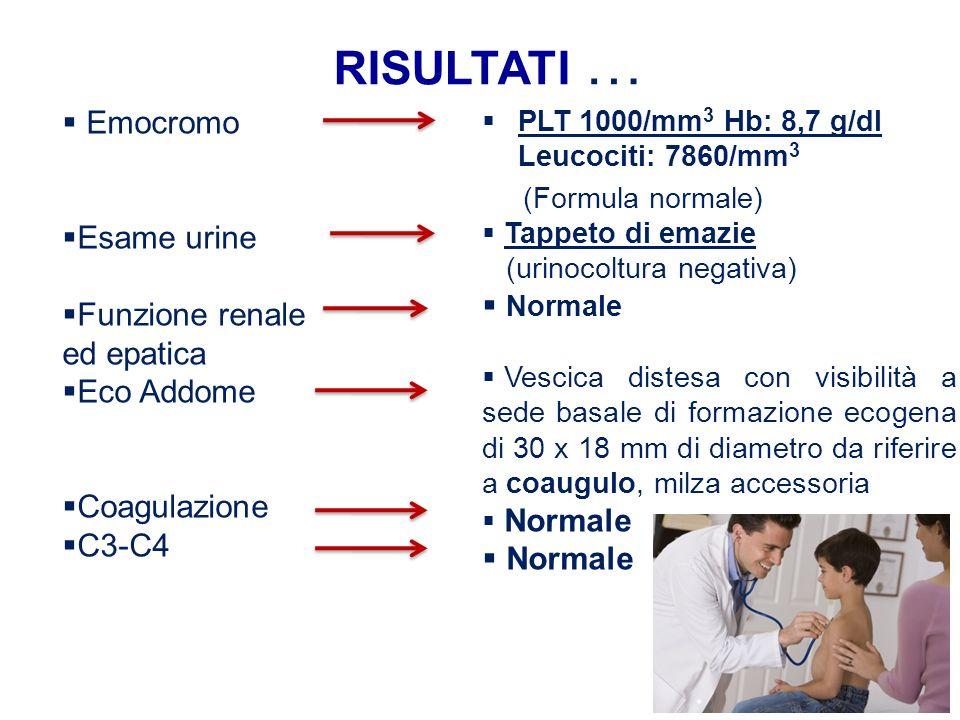risultati … Emocromo Esame urine Normale Funzione renale ed epatica