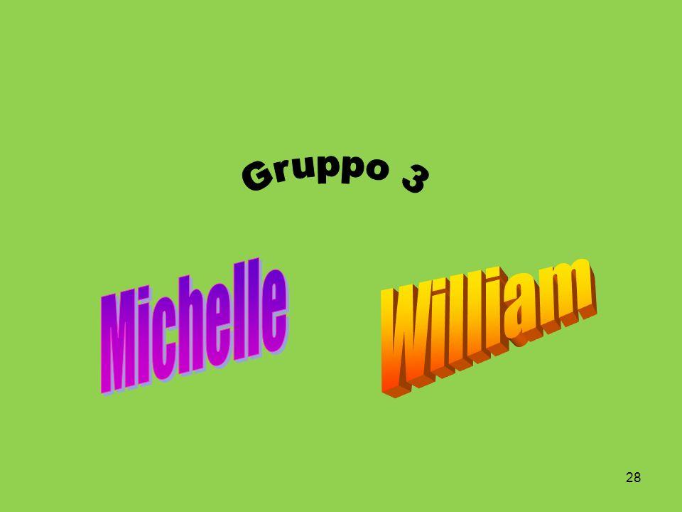 Gruppo 3 Michelle William