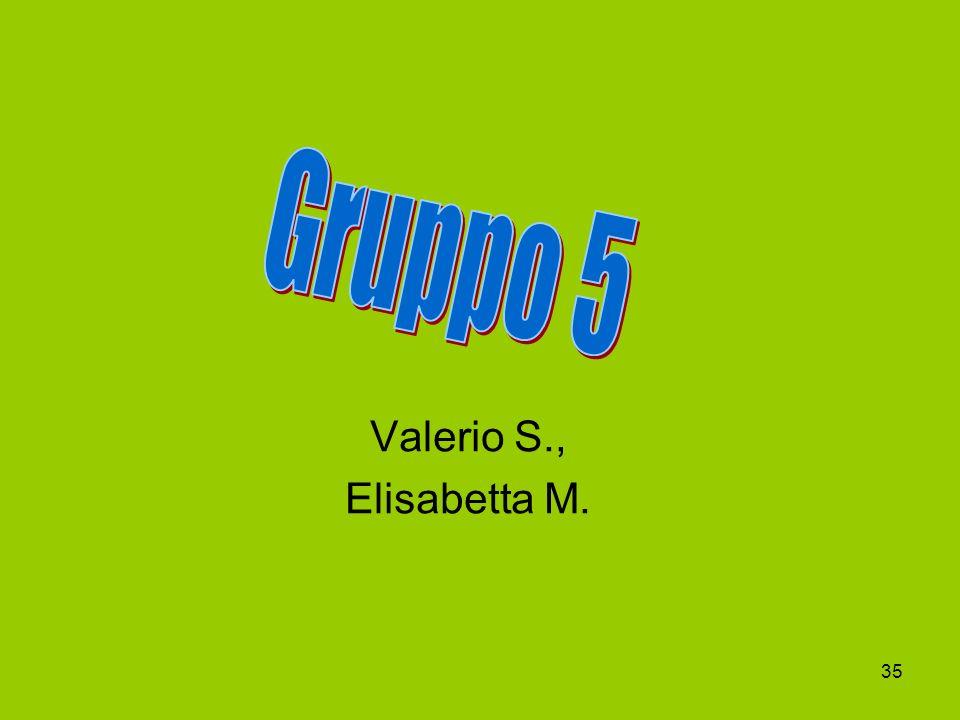 Gruppo 5 Valerio S., Elisabetta M.