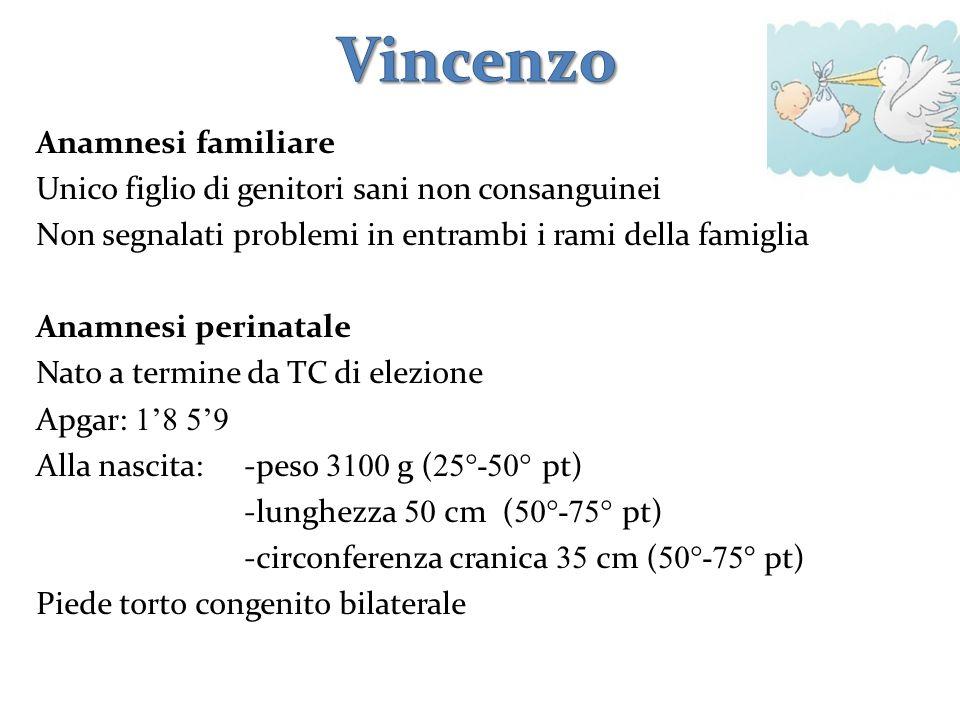 Vincenzo Anamnesi familiare