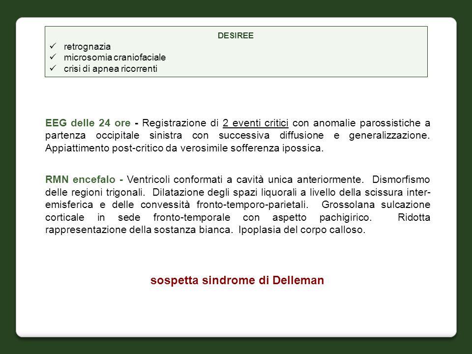sospetta sindrome di Delleman