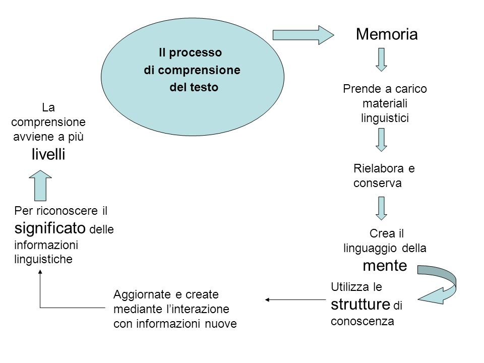 Memoria Il processo di comprensione del testo